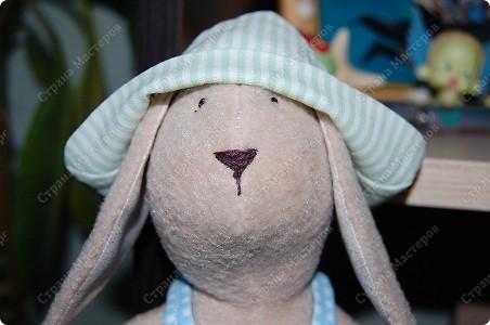 А вот и Мотик, забавный кролик в клечатом комбезе)))) фото 3