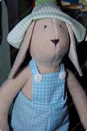 А вот и Мотик, забавный кролик в клечатом комбезе)))) фото 4