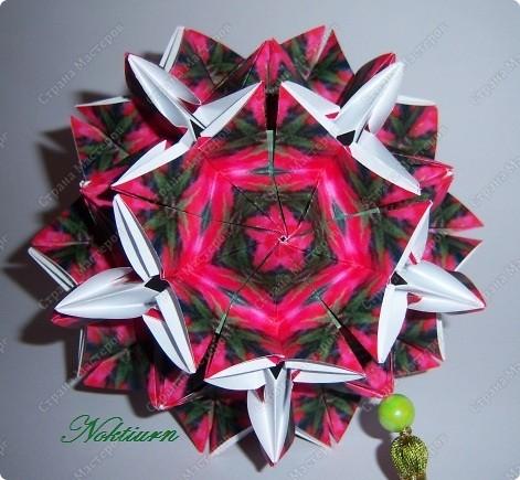 И снова, здравствуйте! Эта расцветка Амариллиса  мне напомнила Рождественский цветок. фото 1