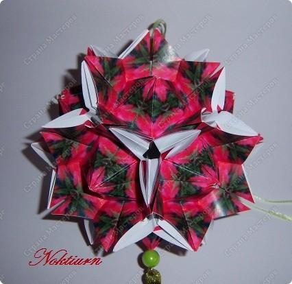 И снова, здравствуйте! Эта расцветка Амариллиса  мне напомнила Рождественский цветок. фото 2