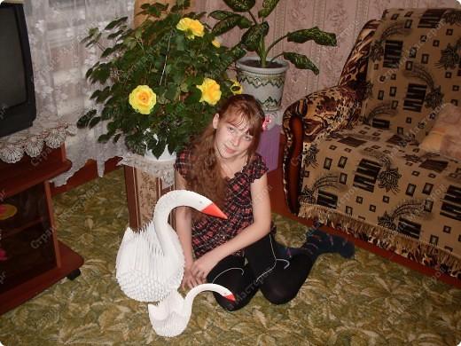 бычёк 2010 фото 6