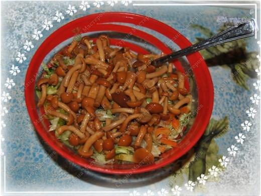 Позвольте и мне поделится моим новогодним меню, которое было на столе в новогоднюю ночь 2010-2011 года. Помимо этих блюд на столе был тортик (см. http://stranamasterov.ru/node/133781) и свинина с картофелем, запеченная с ананасами и грибами под сыром с майонезом (увы, не успела сфоткать) фото 5