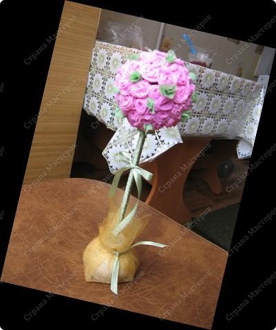 Мое розовое дерево фото 1