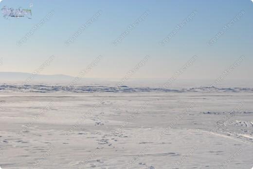 """Поздравляю ВСЕХ с праздником КРЕЩЕНИЯ ГОСПОДНЕ!!! Эх, и морозцы у нас наступили - крещенские морозы!!! Вот захотелось пригласить ко мне в гости - познакомить с местами, где я живу. Проходите!!!  Как-то к нам под новый год заглянул """"корабль пустыни"""" - замерз под елкой-то! фото 7"""