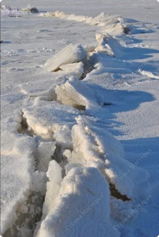 """Поздравляю ВСЕХ с праздником КРЕЩЕНИЯ ГОСПОДНЕ!!! Эх, и морозцы у нас наступили - крещенские морозы!!! Вот захотелось пригласить ко мне в гости - познакомить с местами, где я живу. Проходите!!!  Как-то к нам под новый год заглянул """"корабль пустыни"""" - замерз под елкой-то! фото 13"""