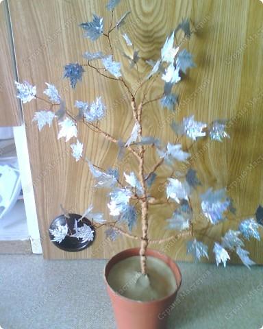 Зимнее дерево фото 1
