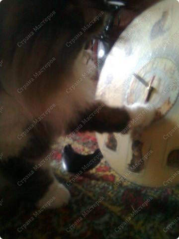 Пластинки, салфетка, акриловые краски фото 3