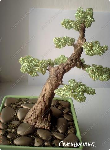 Дерево в стиле инь-янь фото 4