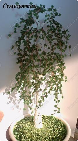Дерево в стиле инь-янь фото 3