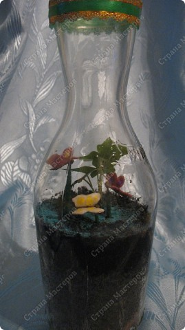 А кто в бутылке? фото 1