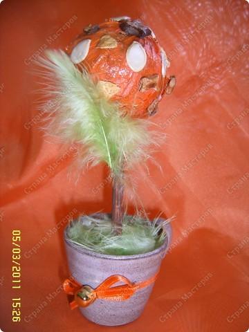 Сегодня доделала деревце-в гости собираюсь :) Воснове шара взята газета,обклеена физалисом и сверху наклеены кусочки коры и семена,покрыто лаком. фото 1