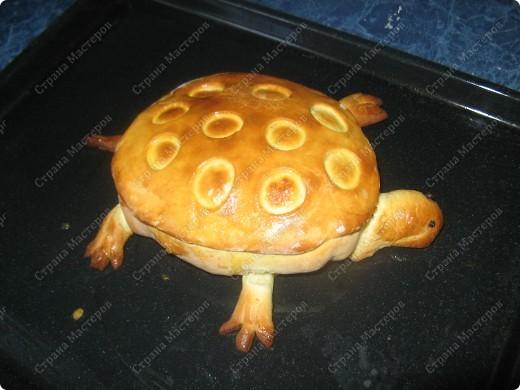 Решила попробовать испечь пироги, мама сказала срочно пристроить начинку из мяса с грибами и вот что получилось! фото 5