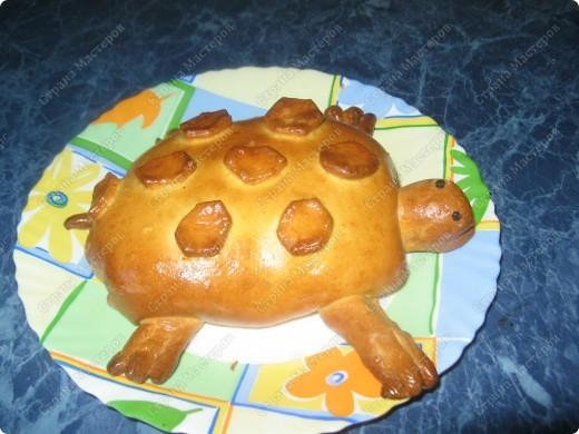 Решила попробовать испечь пироги, мама сказала срочно пристроить начинку из мяса с грибами и вот что получилось! фото 6