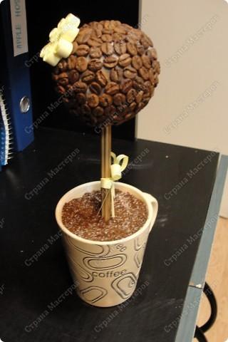Стоит теперь на работе возле кофейного апарата и призывно пахнет кофе))) фото 1