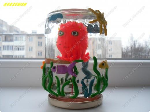 Мини-аквариум в банке Пластилин фото 2