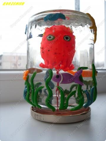 Мини-аквариум в банке фото 1
