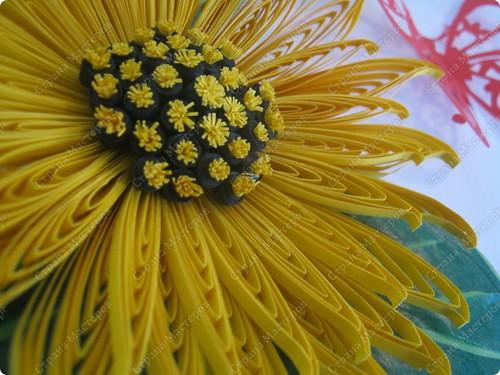Вот и Весна. Наступила наконец-то….Зажурчала  в проталинках, запела, зазвенела, заблестела многоцветными переливами весенних ручейков. И на душе тоже поет песня: творчества и радости. Солнышко – самое дорогое из природных даров, которое есть у человека.  Наши подсолнухи большие, широколистные, словно позаимствовали лучей у самого Царь – Солнышка.  фото 3