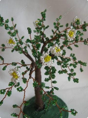 Поделка изделие Плетение Деревья Бисер фото 2.