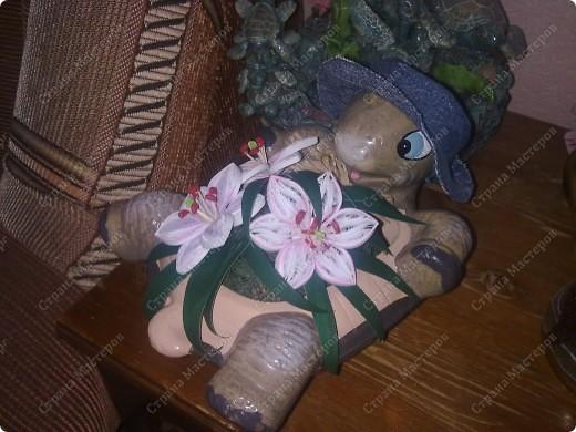 Черепашку я заказывала через интернет совсем другую, когда пришла посылка я очень разочаровалась, черепаха была шершавая и неприятная на ощупь и на голове у нее был приклеен кусок мешковины, который закрывал всю мордочку. Мешок этот я сразу оторвала, сшила ей шляпку (она большеватая, но по другому никак, вместе с мешком и слезла краска), покрыла ее лаком и так она у меня и стояла, пока я не попала в Страну Мастеров и не увидела работы в технике квиллинг!!!  фото 2