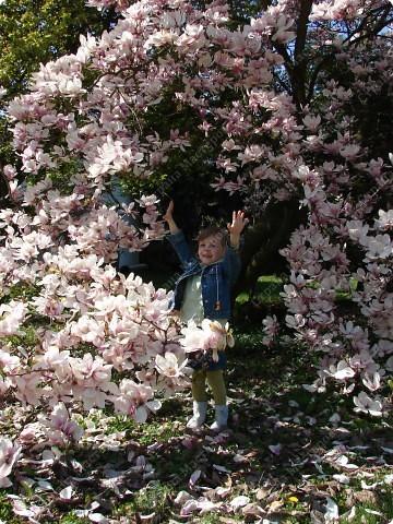 всем здравствуйте , кто меня ещё помнит)  как давно я уже ничего не показывала,вот что значит пришла весна)  но вот пришёл и мой час) встречайте  фото 15