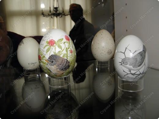 То, что я увидела, меня так поразило, что хочу поделиться со всеми своими впечатлениями. Я думаю, что вы меня поймете, когда посмотрите все сами. Резьба по страусиному яйцу и роспись... фото 8