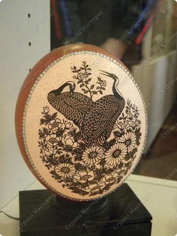 Продолжая начатую тему выставки пасхальных яиц. Это 2 часть.  Яйца украшены соломкой... фото 5