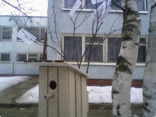 """Поделка для детского сада на тему """"Весна"""". (на берёзовых ветках висят загадки о весне) Если скворечник покрасить, то в нём на самом деле могут жить мелкие птахи. размеры 150*150*300 мм."""