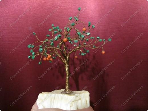 Дерево счастья из медной проволоки( жилы от телефонного кабеля ). Камни зелёные - малахит, красные бусины - коралл, подставка - что-то вроде природного гипса... Моя первая работа фото 1