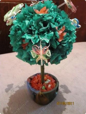 Бабочное дерево!!!))) Это мои Бабочки) фото 3