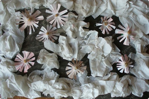 Первые цветы. Подснежники