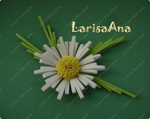 """У Anjuta есть замечательный МК """" на расчёске"""" http://stranamasterov.ru/node/87089 !!!!!!!  Получилась вот такая ромашка!!!!!!!!!!!! Анечка, спасибо))) фото 1"""