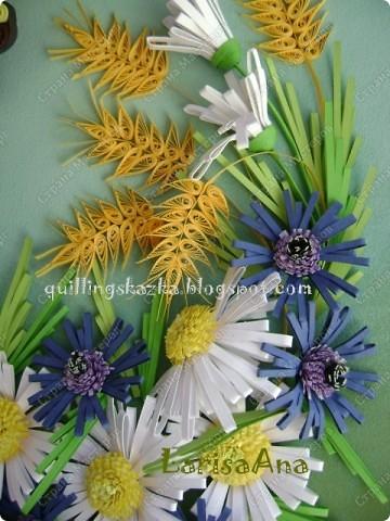 Полевые цветы... Полевые... Васильки и ромашки в лугах... Ярко-синие и голубые – На бескрайних наших  полях.  Сколько нежности, яркости, света Вы храните в себе летним днем... Теплым солнцем весной вы согреты, И умыты осенним дождем...  Полевые цветы... Полевые... Не сравнить вас с садовым цветком. Вы согрели мне душу, родные! Поселились вы в сердце моем!   фото 3