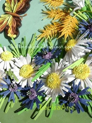 Полевые цветы... Полевые... Васильки и ромашки в лугах... Ярко-синие и голубые – На бескрайних наших  полях.  Сколько нежности, яркости, света Вы храните в себе летним днем... Теплым солнцем весной вы согреты, И умыты осенним дождем...  Полевые цветы... Полевые... Не сравнить вас с садовым цветком. Вы согрели мне душу, родные! Поселились вы в сердце моем!   фото 4