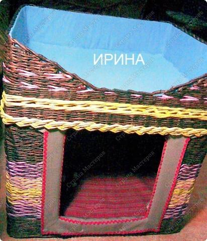 плетеная двухэтажная будка фото 1