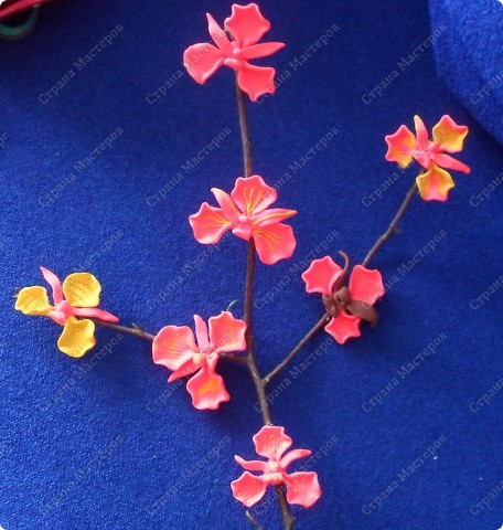Спасибо за чудесные орхидеи Валентинке Порчелли! А это мои первенцы, которые чуть - чуть подпортила в духовке пока обжигала. фото 2