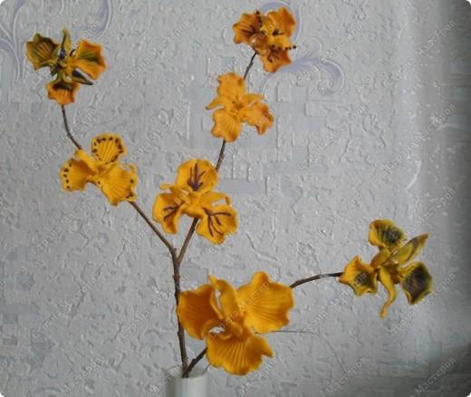 Спасибо за чудесные орхидеи Валентинке Порчелли! А это мои первенцы, которые чуть - чуть подпортила в духовке пока обжигала. фото 1