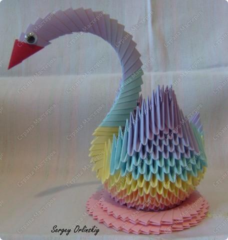 Радужный лебедь  фото 1
