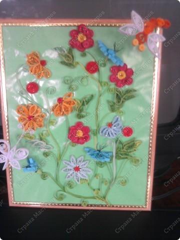 бабочка и стрекоза порхают над цветами