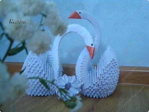 Это моя вторая работа, получилось лучше чем первая)) за задумку спасибо стране мастеров.  http://stranamasterov.ru/technic/swan фото 1