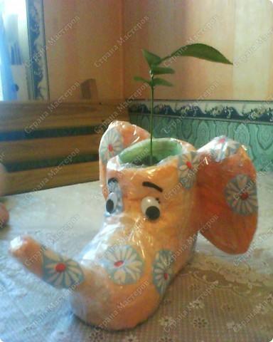 """Такое """"слоновое"""" кашпо придумалось на День Рождения подруге, которая очень любит слонов)). А в нем растет проросший апельсинчик! Сделано из детского резинового сапога) фото 1"""