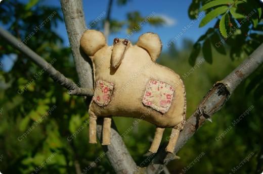 Снумри Лошадь, это ароматическая интерьерная игрушка. Справится с ролью оберега. Почему снумри? Даже не знаю... Просто название само родилось, как только появилась первая игрушка из этой серии. фото 2