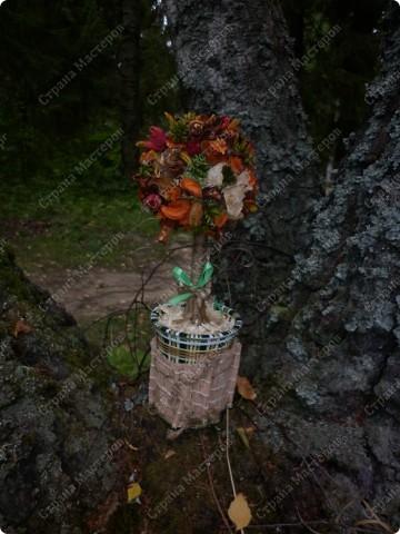 мое деревце в гламурных тонах фото 3