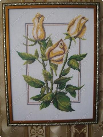 Вышивка крестом. Жёлтые розы