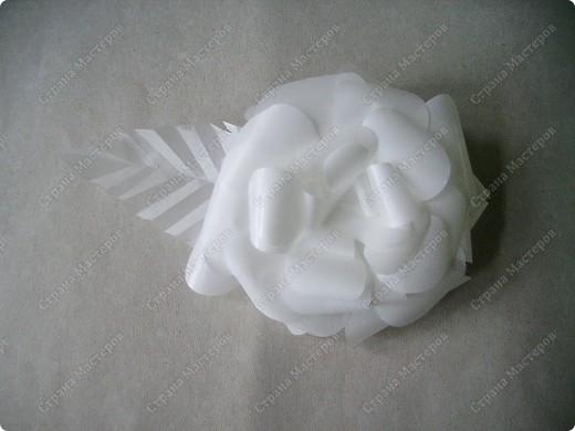 Роза из кальки - легко! фото 25