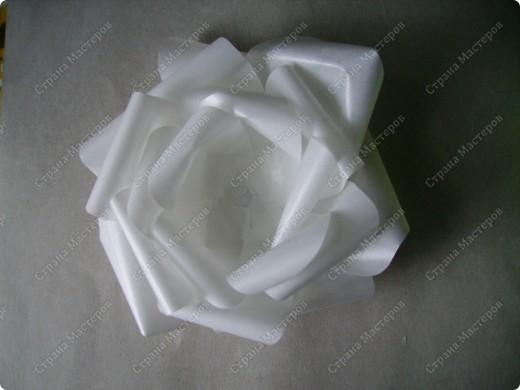 Роза из кальки - легко! фото 10