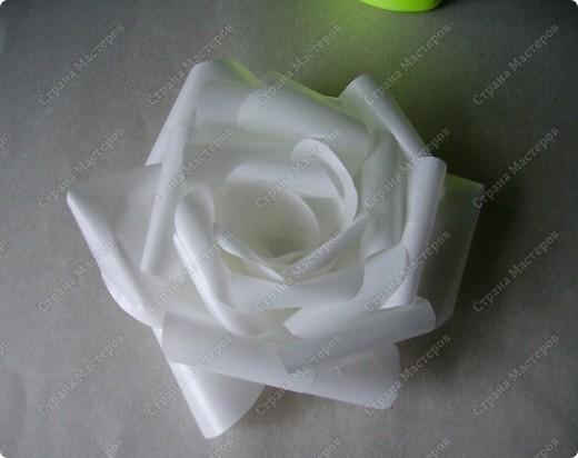 Роза из кальки - легко! фото 13