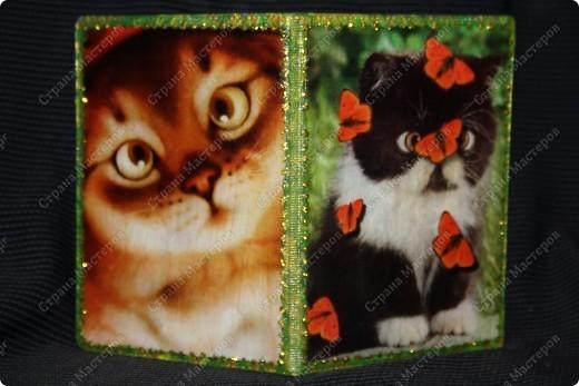 А то для меня любимой обложка на паспорт чудесные котята фото 1