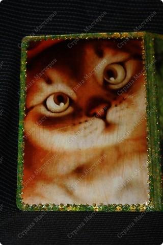 А то для меня любимой обложка на паспорт чудесные котята фото 2