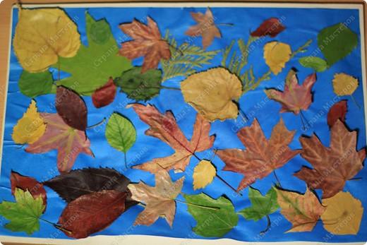 Лис и лисенок- повторюшка фото 2