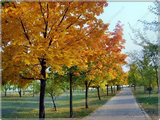 Вот гуляли мы с малышкой на выходных - и вот так принарядила Осень улицы нашего городка)  фото 1